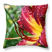 Watered Throw Pillow