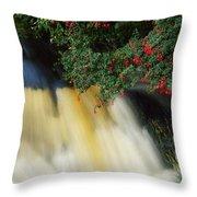 Waterfall And Fuschia, Ireland Throw Pillow