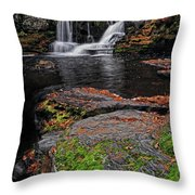Waterfall Childs State Park Throw Pillow