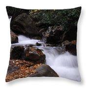 Waterfall In Fall Throw Pillow