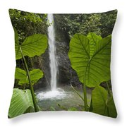 Waterfall In Lowland Tropical Rainforest Throw Pillow