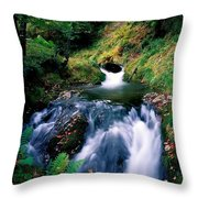 Waterfall In The Woods, Ireland Throw Pillow