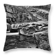 Waterfall Mono Throw Pillow