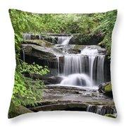 Waterfall Near Mabbitt Spring Throw Pillow