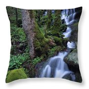 Waterfall Pouring Down Mountainside Throw Pillow