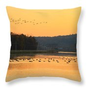 Waterfowl At Turners Falls Canal Throw Pillow