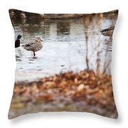 Waterfowl Calisthenics Throw Pillow