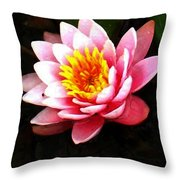Waterlily On Pond Throw Pillow