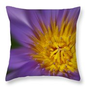 Waterlily Zoom Throw Pillow