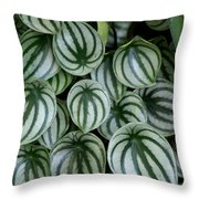 Watermelon Leaves 2 Throw Pillow