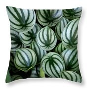 Watermelon Leaves Throw Pillow