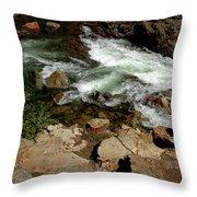 Waters Edge Glen Alpine Creek Throw Pillow