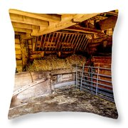 Watersfield Stable Throw Pillow