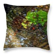 Watershed Creek Throw Pillow