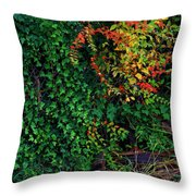 Watershed Park Foliage Throw Pillow