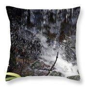 Watersplash In Sunlight Throw Pillow