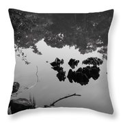Watery Reflections Throw Pillow