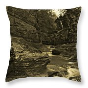 Watkins Glen In Orotone Throw Pillow
