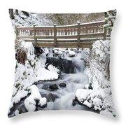 Waukeena Creek, Columbia River Gorge Throw Pillow
