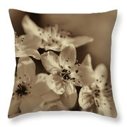 Waves Of Light In Sepia Throw Pillow