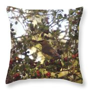 Wax Wing In A Berry Tree  Throw Pillow