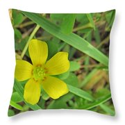 Way Down In The Grass Throw Pillow