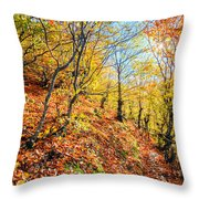 Way To The Chapel Throw Pillow