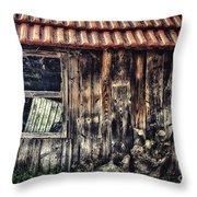 Wayside Throw Pillow by Jutta Maria Pusl