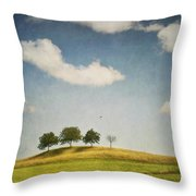 We Are 4 Throw Pillow