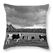 Weather Talk Monochrome Throw Pillow