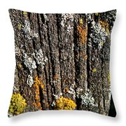 Weathered Post Throw Pillow