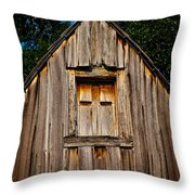 Weathered Structure Throw Pillow