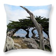 Weathered Tree On California Coast Throw Pillow