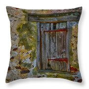 Weathered Vibrancy Throw Pillow