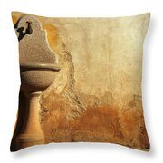 Weathered Water Faucet Throw Pillow