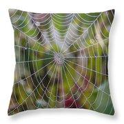 Web Design Throw Pillow