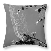 Web In The Rain B-w Throw Pillow