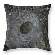 Web Of A Funnel-web Spider Throw Pillow