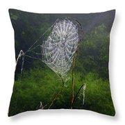 Web Over Foggy Lake Throw Pillow