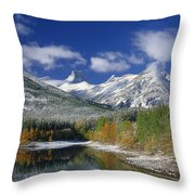 Wedge Pond Throw Pillow