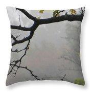 Wednesday Mist Throw Pillow