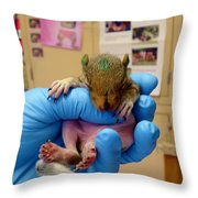 Wee One Throw Pillow