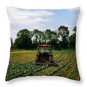 Weeding A Cabbage Field, Ireland Throw Pillow