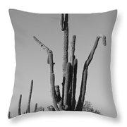 Weird Giant Saguaro Cactus In Black And White Throw Pillow