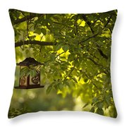 Welcome Feather Friends Throw Pillow