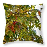 Welcome Sight Throw Pillow