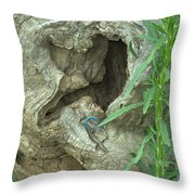 Welcome To My Home Throw Pillow