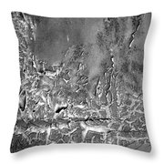 Well Weathered Throw Pillow
