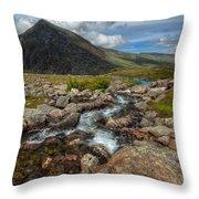 Welsh Valley Throw Pillow