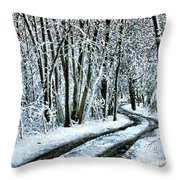 Wending One's Way Throw Pillow